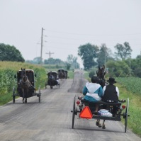 Amish families on their way home from church. Fountain City, Indiana. July 2018.
